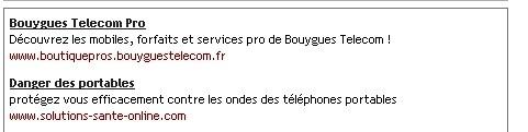 Bouygues 2.jpg